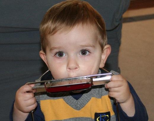 harmonicaboy